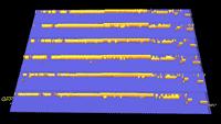 blastx analysis