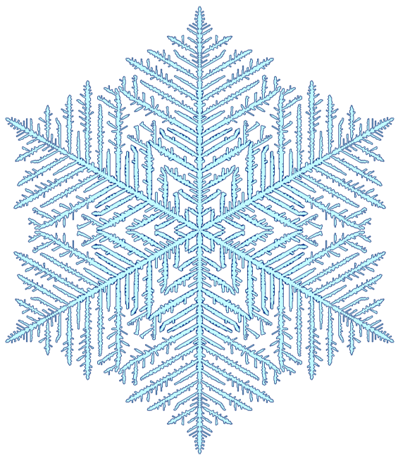 In Silico Flurries: Gravner-Griffeath Snowflake Simulation - Martin
