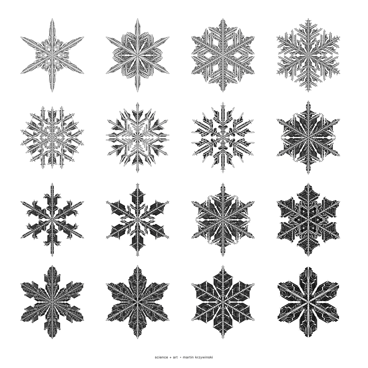 In Silico Flurries: Gravner-Griffeath Snowflake Simulation